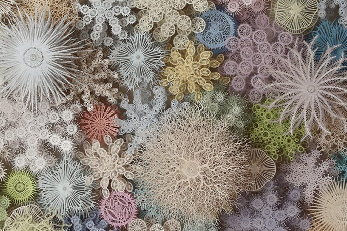 A detail of a larger artwork filled with three-dimensional layers of intricately detailed paper cut outs made to look like different varieties of coral. The individual paper corals range in color from white to pale blues, purples, yellows, greens, and reds.