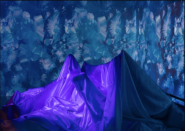 A large, satiny cloth draped over an unrecognizable object that juts out in round and sharp points. In the background, there is a wall-sized image that resembles a cyanotype. What look like shattered vinyl records collage with explosive shapes that may be flowers or fireworks. A violet light highlights the cloth in the foreground.