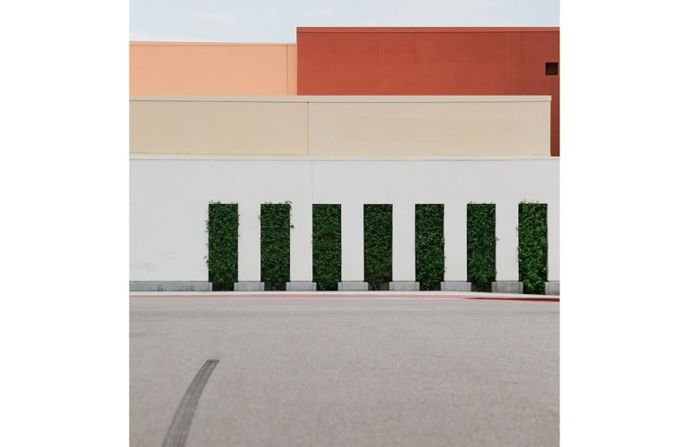 Photograph of a row of seven tall, rectangular hedges lining the edge of what seems to be a parking lot, each with slightly different amounts of stray, untrimmed branches. Behind the shrubbery, industrial walls of various heights and colors compose the background. A single, blurred tire track is streaked across the concrete.