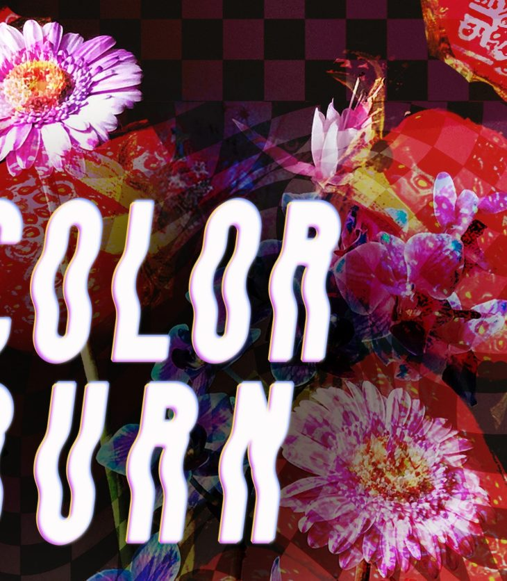 """The words """"COLOR BURN"""" burst forward against a dizzying, digitally collaged background of over-saturated flowers, strawberries, and the rippling, checkered white and black of a flag."""