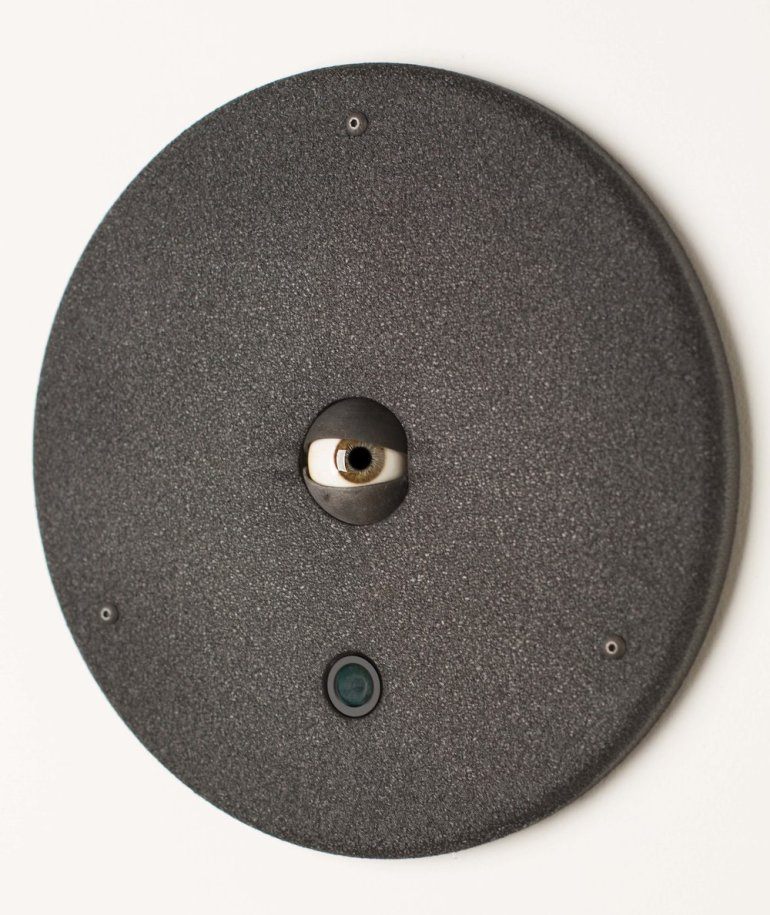 A glassy, hazel eye locks its gaze with the viewer as it's fixed onto a circular black wall mount. One feels watched.