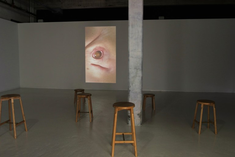 An image is projected onto a far wall, before which are arranged 6 wooden stools in a darkly lit, space, interrupted off-center by a grey pillar.