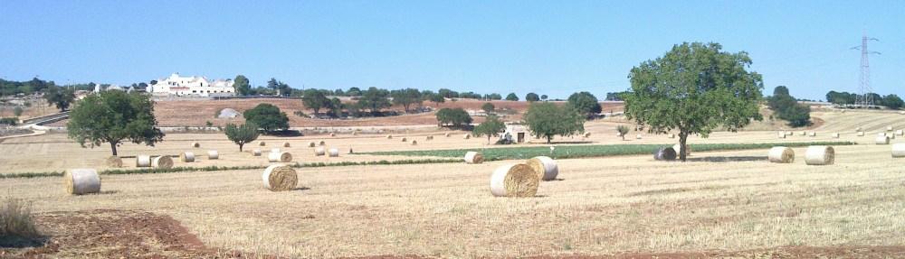 Into the wild Puglia (1/6)