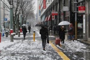 雪の積もった千葉市内の道路