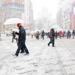 東京都の道路ライブカメラ!積雪や大雪の情報!何度で路面凍結?