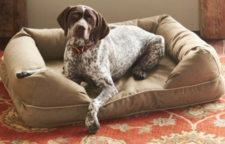 LL Bean Dog Couch