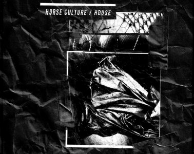 Horse Culture house cover art