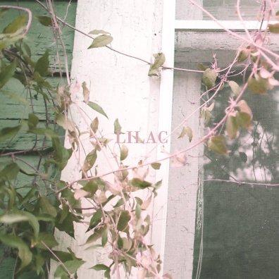 Lilac - Sun