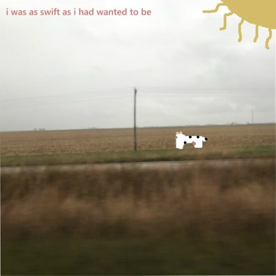 american poetry club - i was as swift as i had wanted to be