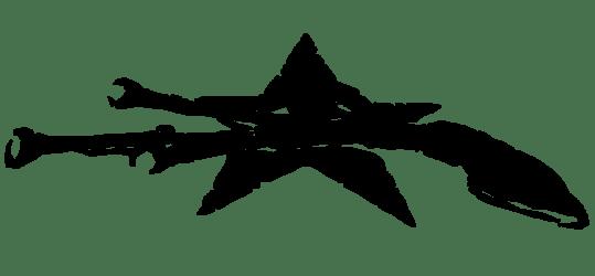 Varius Coloribus Experience