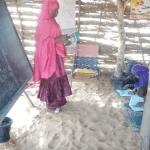 Les pratiques enseignantes au Niger