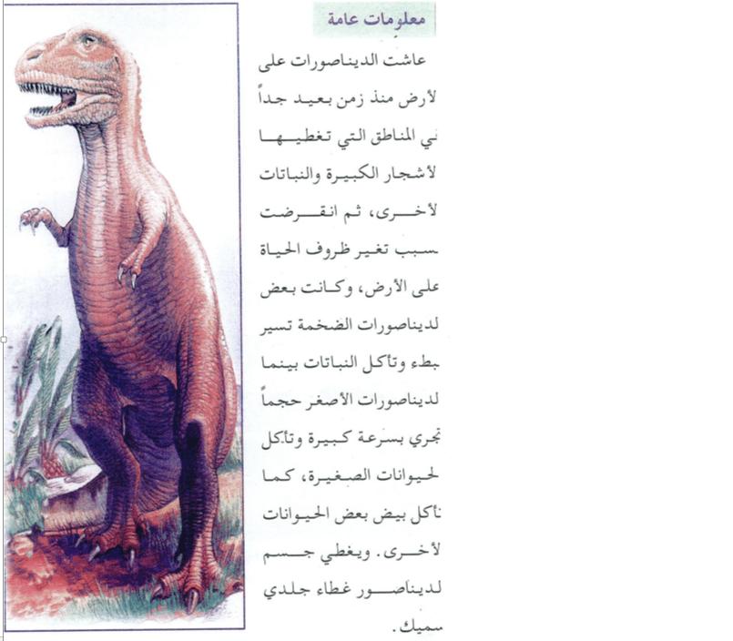 L'enseignement de la lecture en arabe au Maroc (2/4)