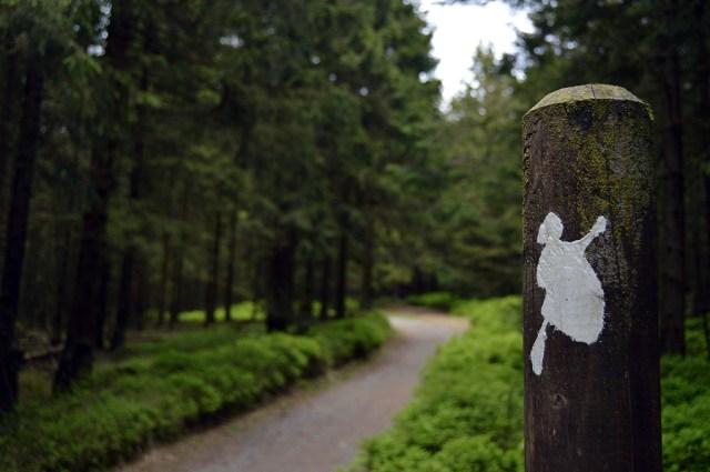 Harzen Hexen Stieg
