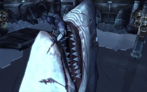 Shark 3 Feet Larger than Jaws Found