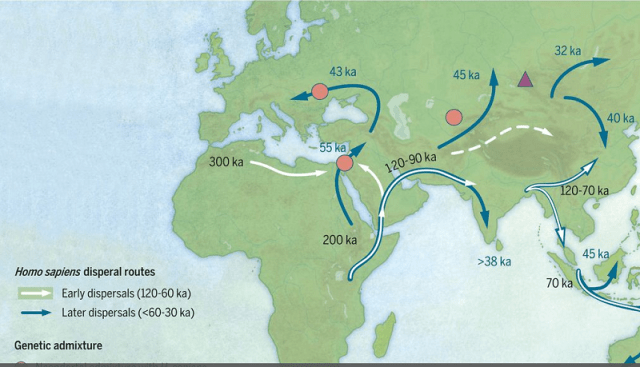 Map of sites with ages and postulated early and later pathways associated with modern humans dispersing across Asia during the Late Pleistocene. (Science Mag, Fair Use)