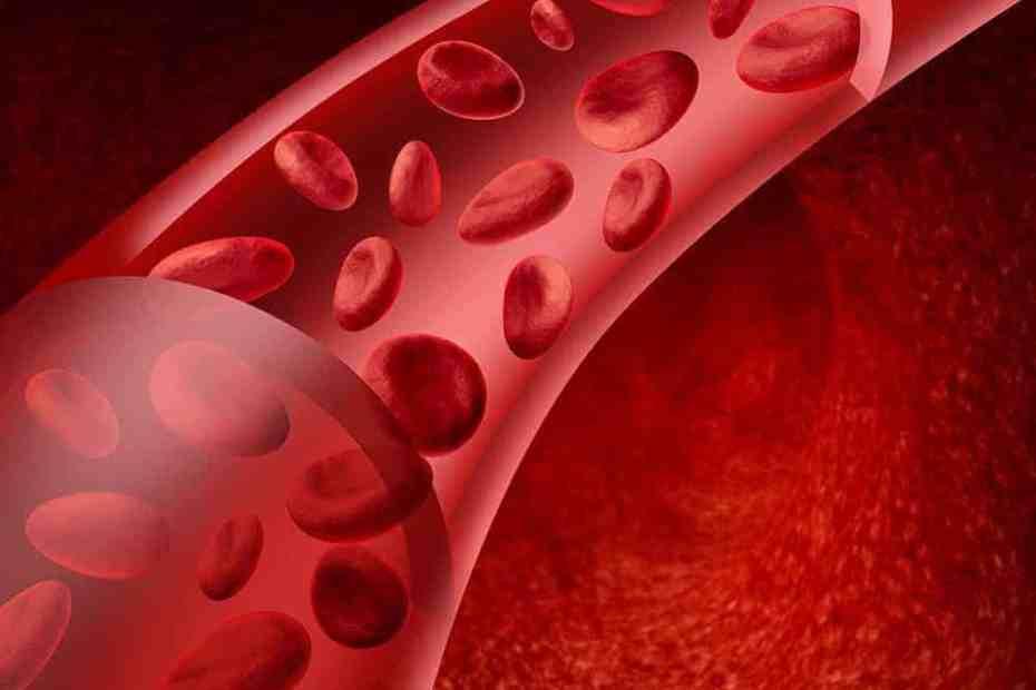 quanto tempo formar um coágulo sanguíneo