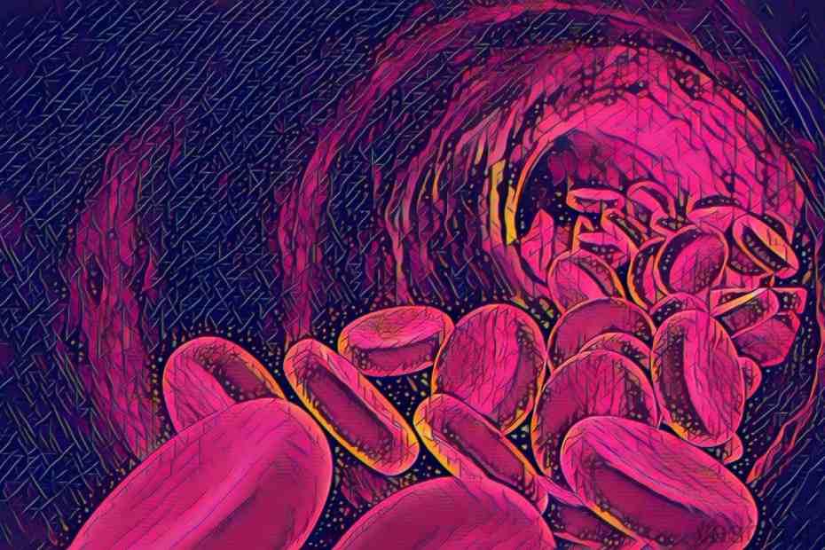 Espaço Vascular do Instituto Amato