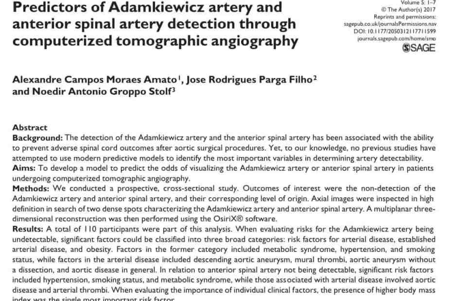 Preditores de idenficação da artéria de Adamkiewicz