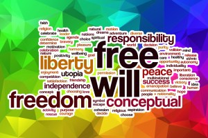 Free will is something that most American's take for granted....you can be a dumb or ridiculous as you want in America.
