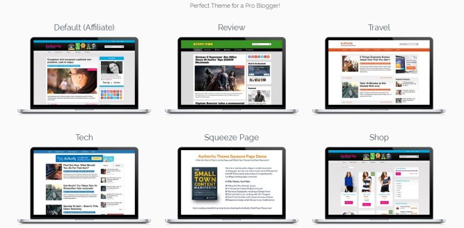 demo layouts authority wordpress theme