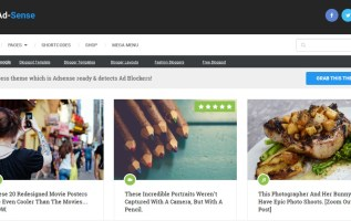 adsense wordpress theme preview