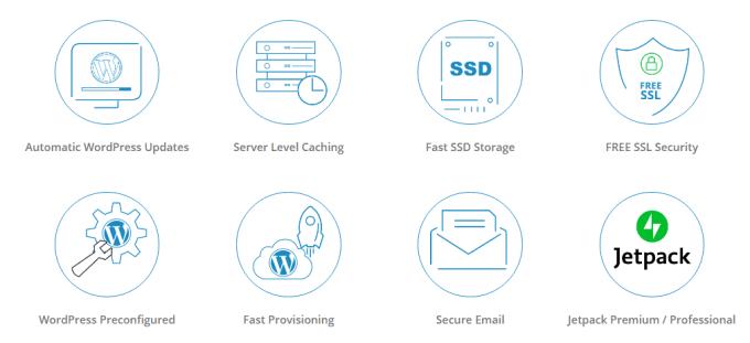 MilesWeb WP Features