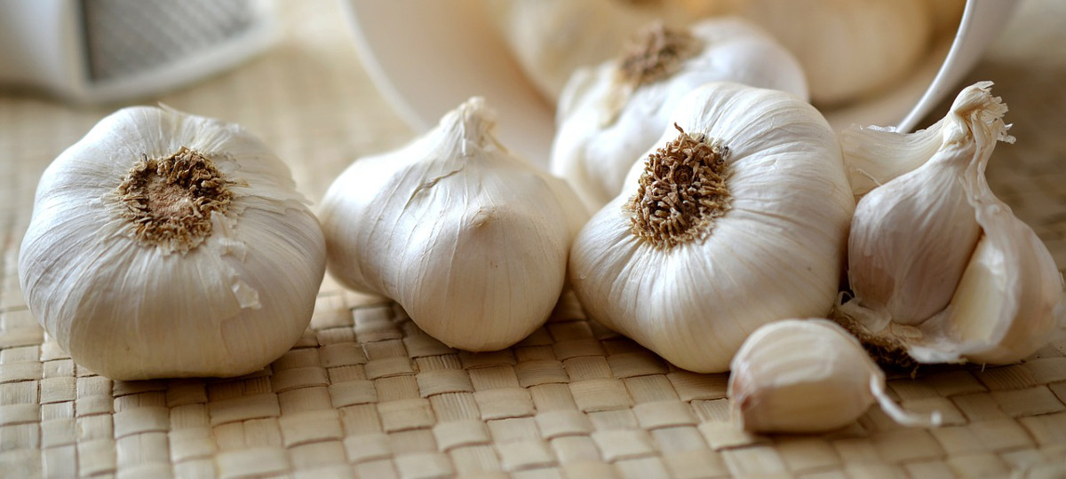 Did You Know That Garlic Can Significantly Lower The Risk Of Stomach Tumors?