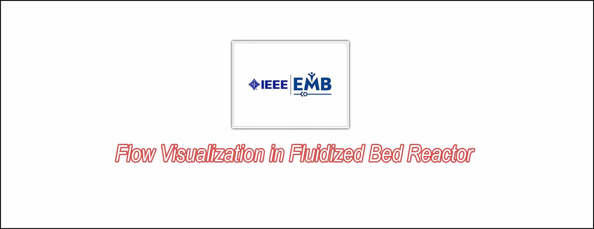 Flow Visualization In Fluidized Bed Reactor