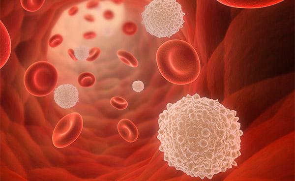 Какую из функций крови не выполняет плазма