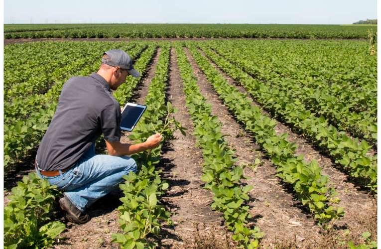 Sunteți tânăr fermier și vreți să vă stabiliți în mediul rural vasluian? Iată în ce condiții primiți 50.000 de euro de la AFIR!