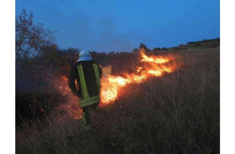 Au ars dealurile Soleștiului, seara trecută! Se caută vinovatul!