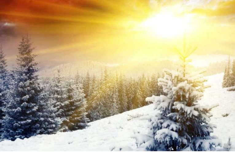 Crăciun Fericit și An Nou plin de bucurii vă urează d-l Dumitru Buzatu