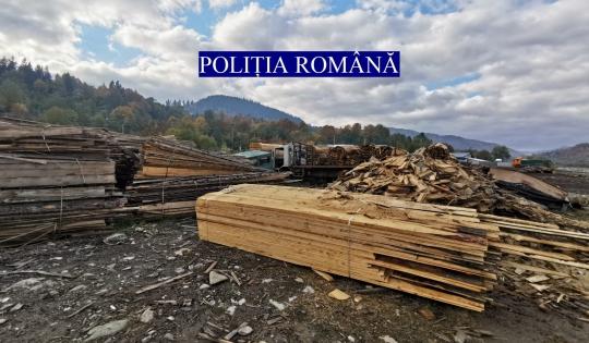 (VIDEO) Hoții de lemne, în vizorul polițiștilor! Controale la ocoalele silvice!