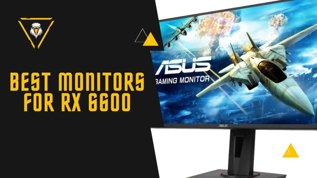 Best Monitor For RX 6600