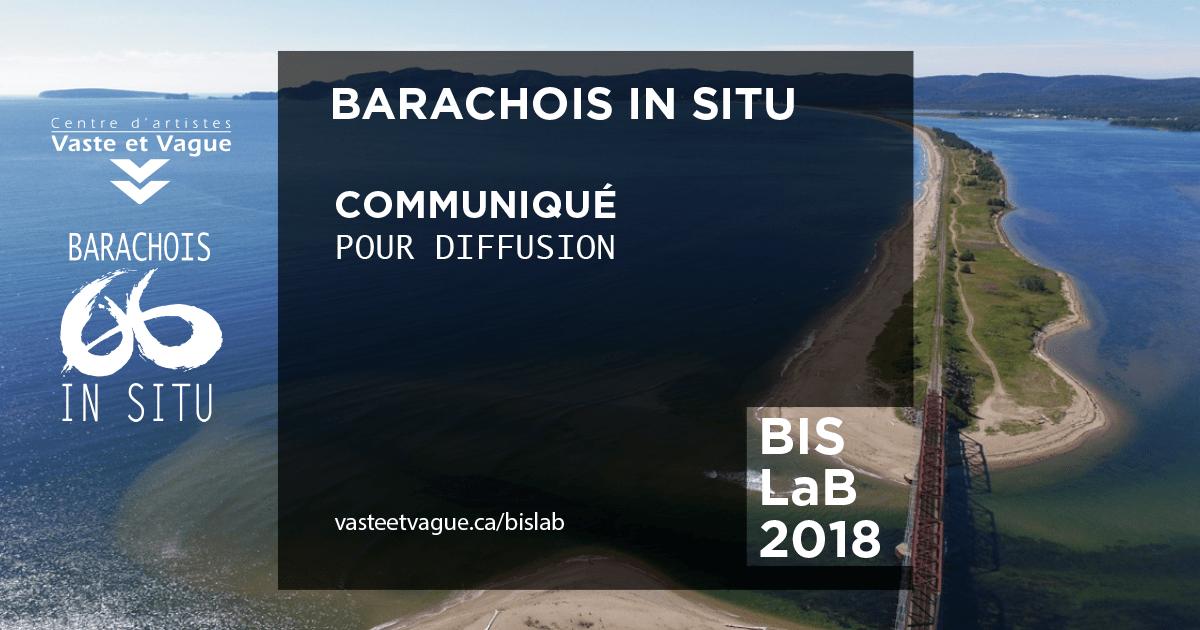 COMMUNIQUÉ BARACHOIS IN SITU - LA BIENNALE | BIS LaB | PERCÉ / Gaspésie | Centre d'artiste Vaste et Vague