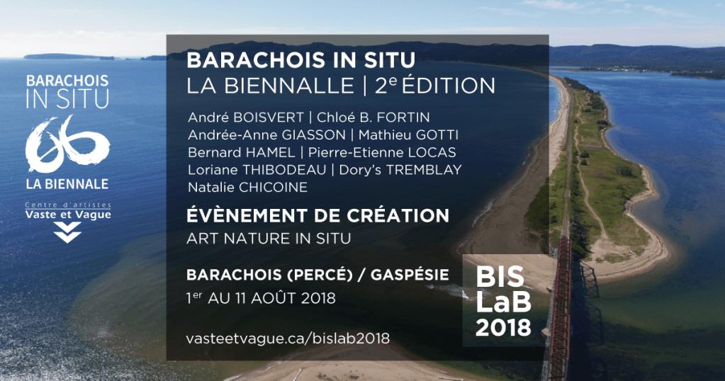 BARACHOIS IN SITU | LA BIENNALE | BISLaB 2018 | Évènement de création | ART NATURE IN SITU | Barachois (Percé) Gaspésie