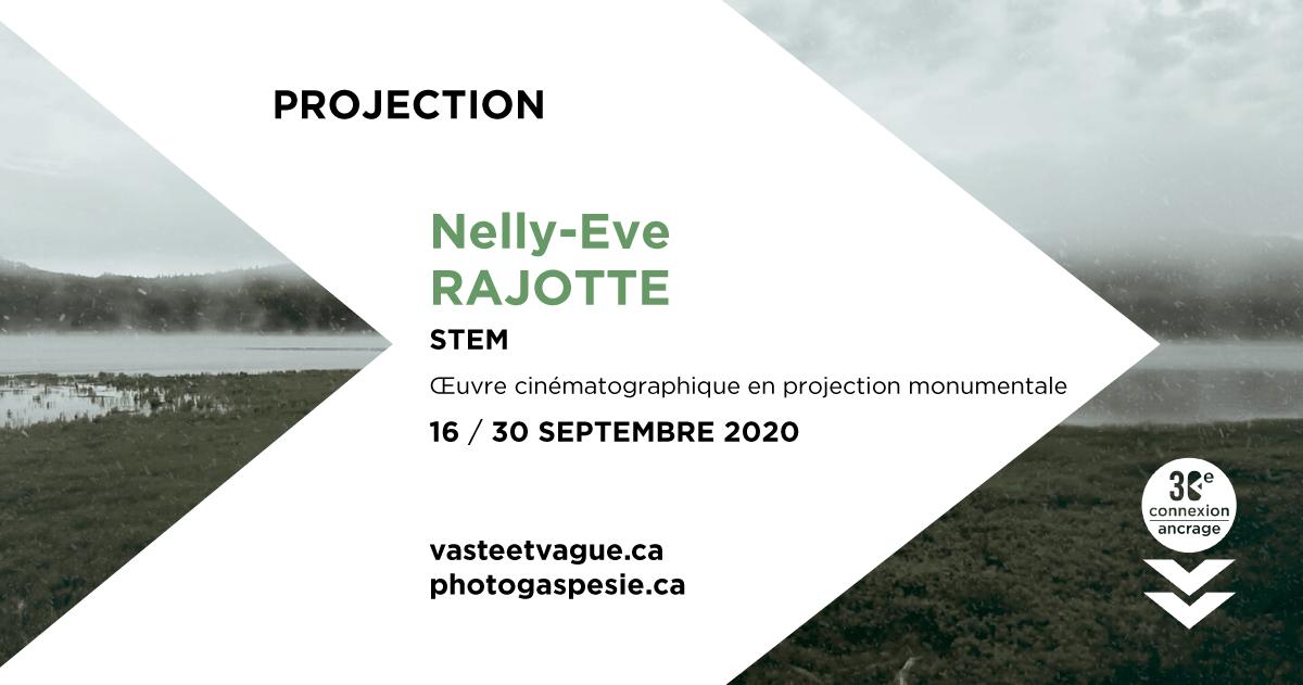 Nelly-Eve RAJOTTE | STEM | Œuvre cinématographique en projection monumentale