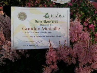 Gouden Medaille - Award KVBC