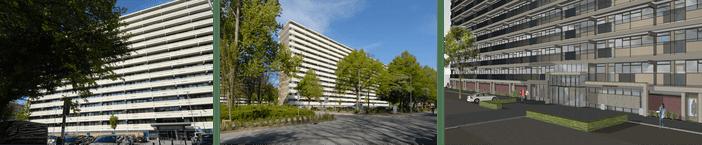 Verbeteronderhoud en verduurzaming ERA-flats in Rotterdam-Ommoord van start