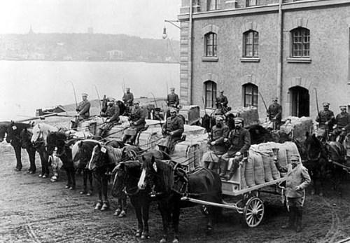 Saltsjöqvarns transportavdelning på häst 1896