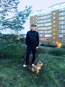 Santos och Håkan på Henriksdalsbergets hundrastgård