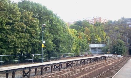 Perong för Saltsjöbanan, bangård och trädrad vid Henriksdal station