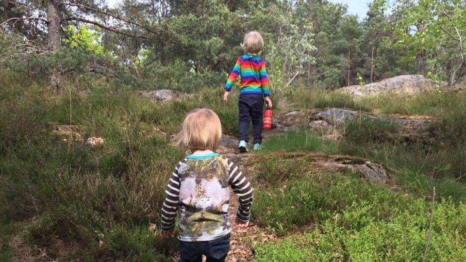 Barnen upptäcker naturen i nyckelbiotopen Trolldalen i Nacka