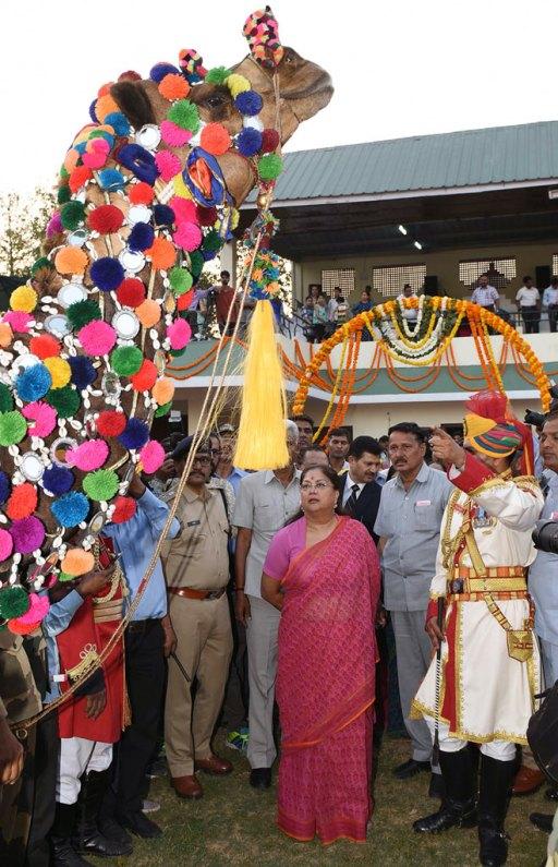 CM Raje on Rajasthan Diwas 2017