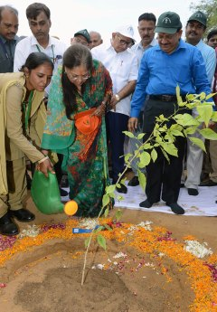 cm-inaugurated-van-mahotsav-by-planting-seeds-CMP_3714