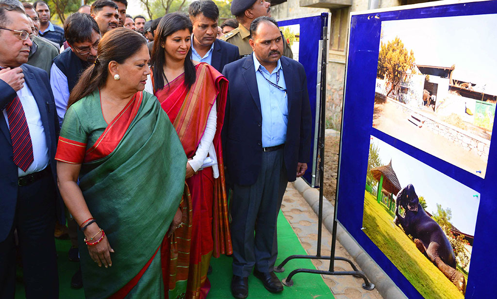 vasundhara-raje-hathi-gaon-wildlife-matters-rajasthan-CMA_2719