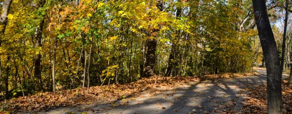 Кроасани и есен