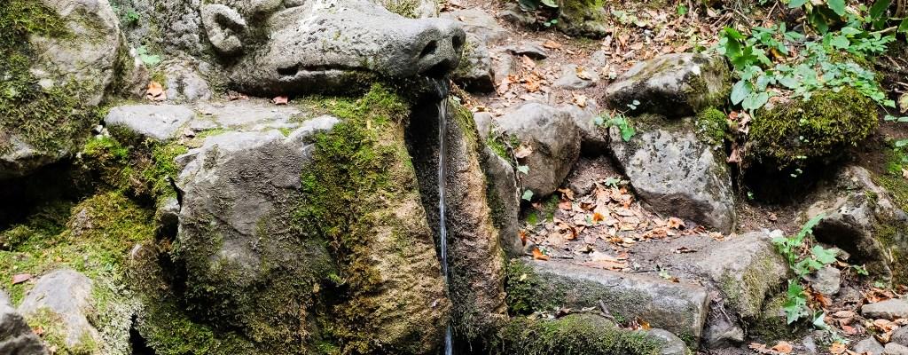 Към живата вода на Боснек