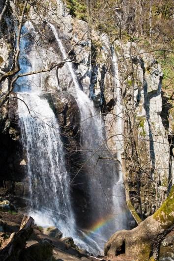 боянски водопад до софия