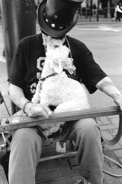 The musician and his dog